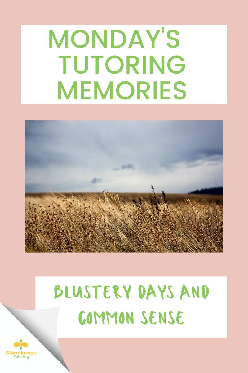 Monday's Tutoring Memories – Reflecting